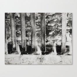 Continuities  Canvas Print
