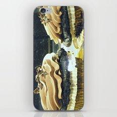 Chocolate Cupcakes! ~ sweets ~ food iPhone & iPod Skin