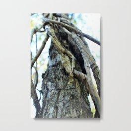 Stills-Climb Metal Print