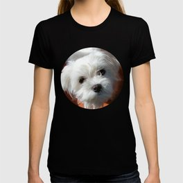 Cute Maltese asking for a treat T-shirt