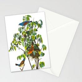 Blue Grosbeak James Audubon Vintage Scientific Illustration American Birds Stationery Cards