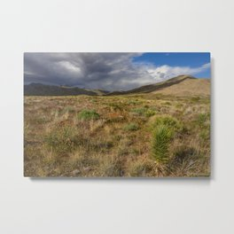 Painted_Desert 2073 - Southwest USA Metal Print