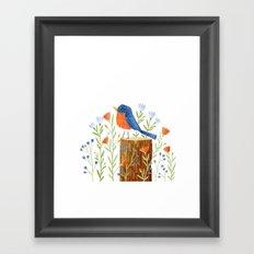 Eastern Bluebird Framed Art Print