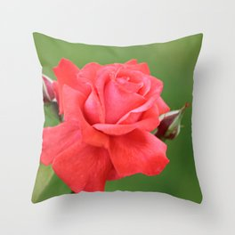 Pink Rose Flower and Buds Throw Pillow
