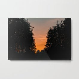 Scenic sunset at the forest Metal Print