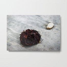 Seaweed Roots Metal Print