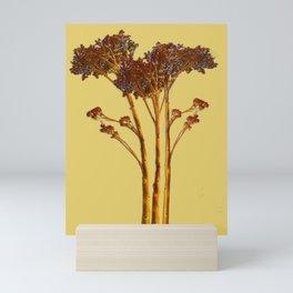 Sedum Dry Mini Art Print