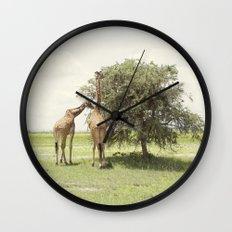 giraffes::rwanda Wall Clock