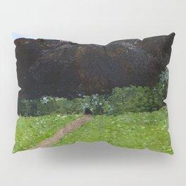 Mountain Pass Pillow Sham