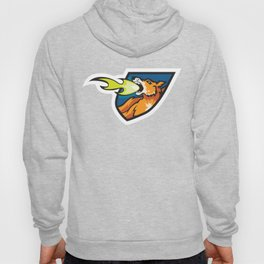 Fire Breathing Rowdys Logo Hoody
