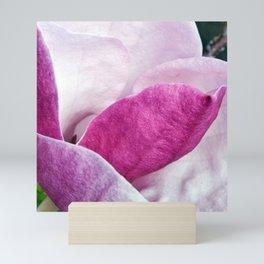 Pink Magnolia of Sicily Mini Art Print