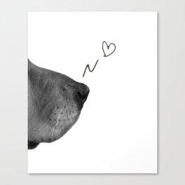 Golden Retriever Dog Snout Canvas Print