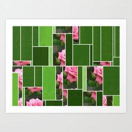 Pink Roses in Anzures 4 Art Rectangles 12 Art Print