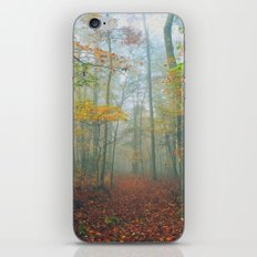 Find Your Path iPhone & iPod Skin