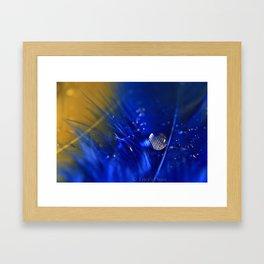 Feather Drop Framed Art Print