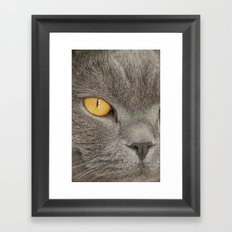 Mister Claude Framed Art Print