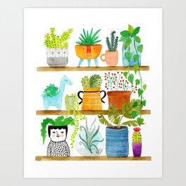 plant shelf Art Print