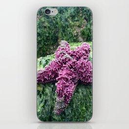 Purple Starfish iPhone Skin