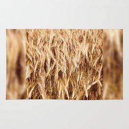 golden cereal grain ears on field Rug