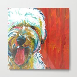 Soft-Coated Wheaten Terrier // Colorful  Metal Print