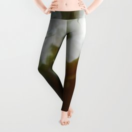 Finding the Light III Abstract Photography Leggings