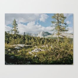 Afternoon in the mountains Canvas Print
