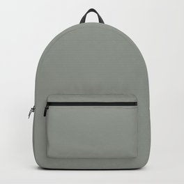 Frosty Pastel Green Solid Color Pairs with Sherwin Williams Haven 2020 Forecast Color - Acacia Haze Backpack