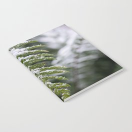 Fern Forest Winter Pacific Northwest Snow II - Nature Photography Notebook