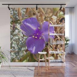 Watercolor Flower, Purple Spiderwort 01, Boulder, Colorado, Dainty Forest Blooms Wall Mural