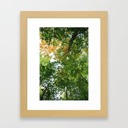 Don't Forget to Look Up Framed Art Print