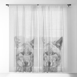Coyote - Black & White Sheer Curtain