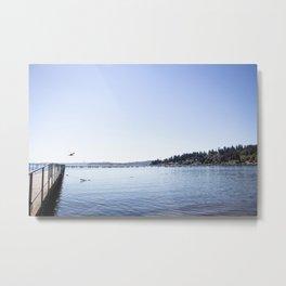 Lake Stroll Metal Print