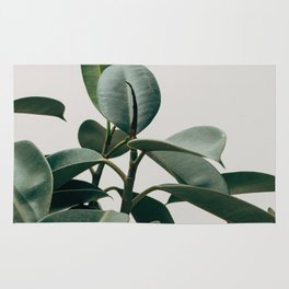 RUBBER TREE PLANT Rug