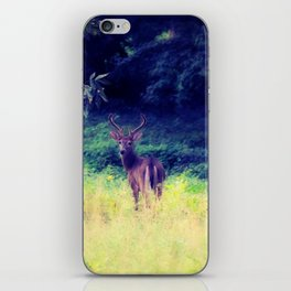 Morning in the Meadow iPhone Skin