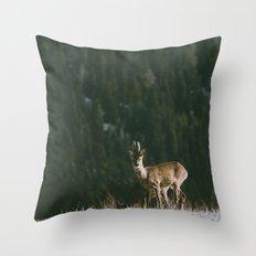 Hello spring! Throw Pillow