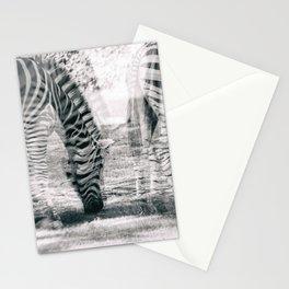 Zebre na trati. Stationery Cards