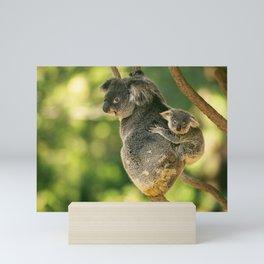 Cute Australian mother Koala with her joey. Mini Art Print