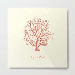 AFE Branch Coral, Living Coral Metal Print