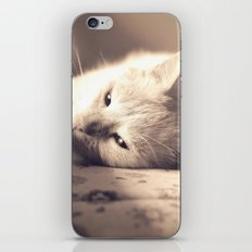 Maia iPhone & iPod Skin