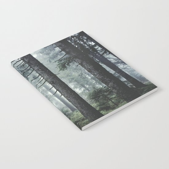 Path Vibes Notebook