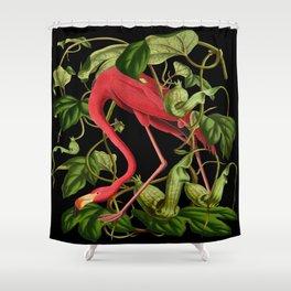 Flamingo Black Shower Curtain