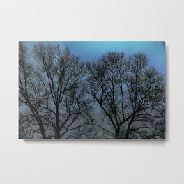 Winteristic Fantasima Metal Print