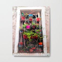 Provence Garden Window Metal Print