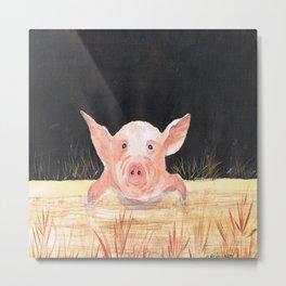 This Little Piggy Metal Print
