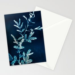 Blue gazes from the cat windows Stationery Cards