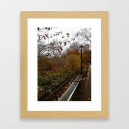 NYC Fall Benches Framed Art Print