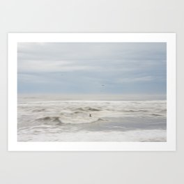 Flight of the Seagul Art Print