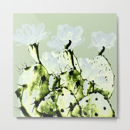 cacti with transparent flowers Metal Print