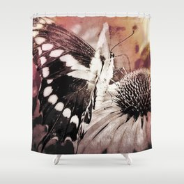 coneflower and butterfly Shower Curtain