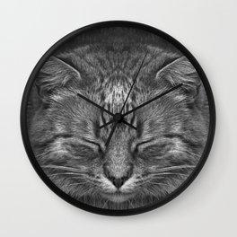 The big Kahuna - My big Ginger Cat Wall Clock